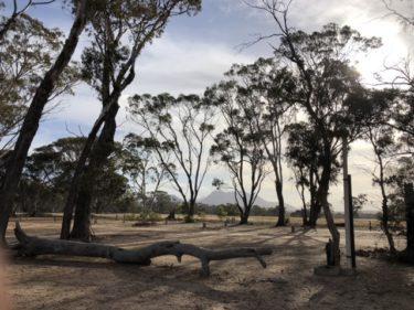 2020年11月 西オーストラリア西南部 ロードトリップ Day1 スターリングレンジ国立公園